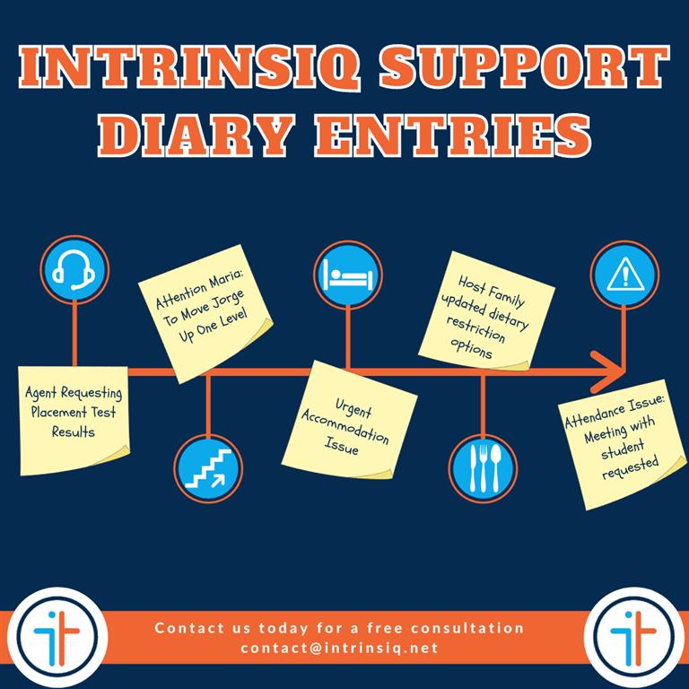 Intrinsiq Support:Diary Entries