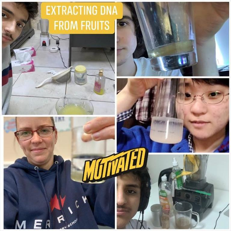 Grade 12 Science experiments hands-on learning synchronous live online